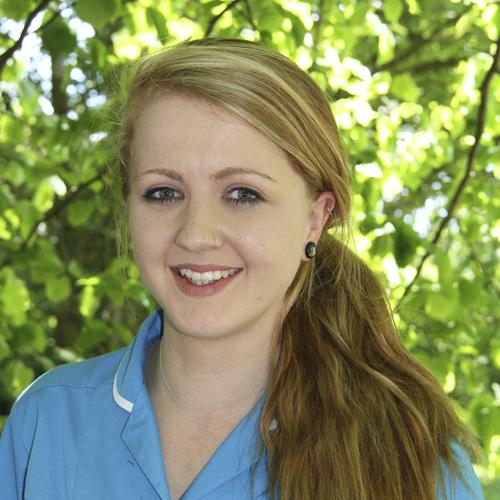 Chelsey Martill (web)